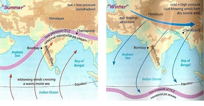 Trade Winds in Summer and Winter