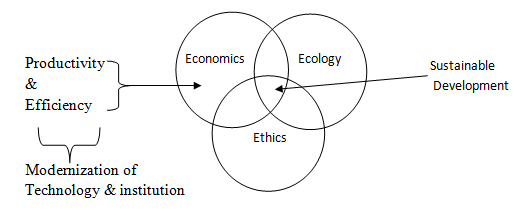 Social & Economic Geography