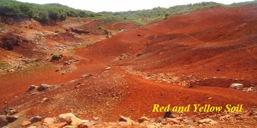 Red and Yellow Soil